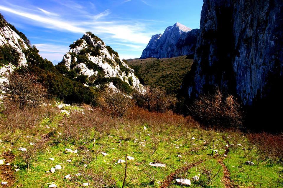 Il Bosco di Ficuzza e Rocca Busambra (istruzioni per l'uso)