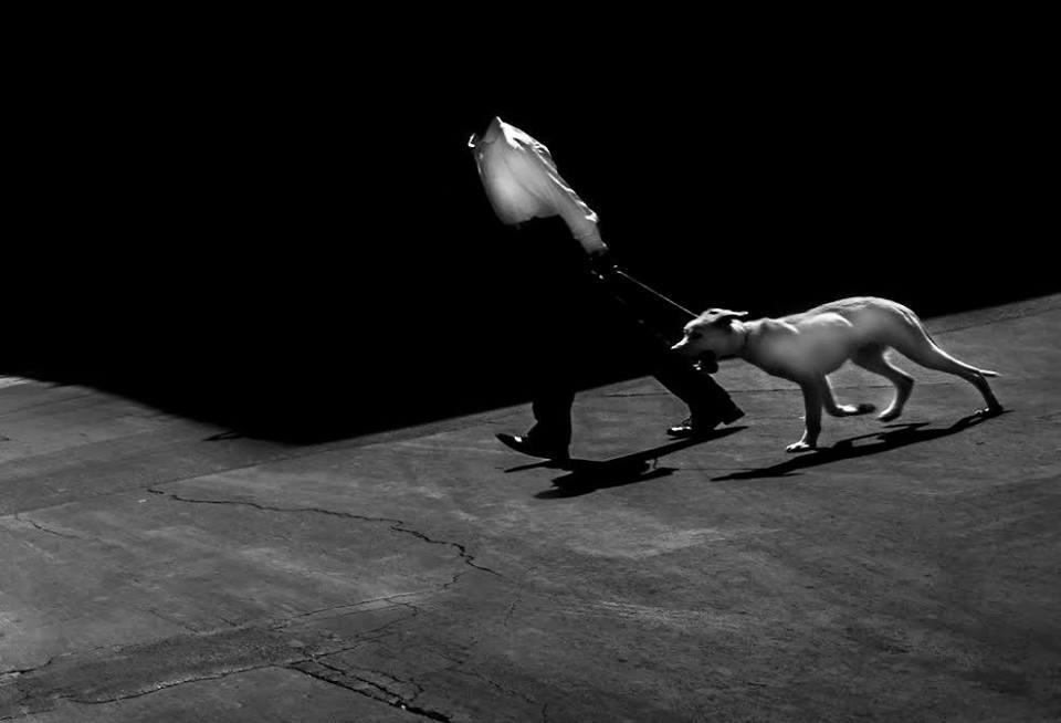 Sembra l'una di notte in un mondo di cani – scatti di Zri Mario Conti – dal 24 febbraio